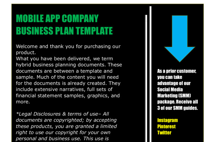 A Sample Mobile App Development Business Plan Template