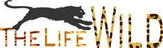 creative-logo-design_ws_1437191012