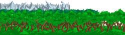 graphics-design_ws_1441472104