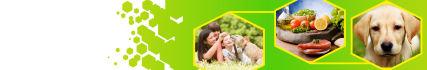 social-media-design_ws_1446385830