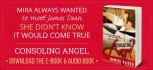 banner-ads_ws_1448533837