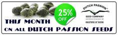 web-banner-design-header_ws_1403893405