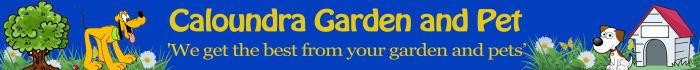 banner-ads_ws_1453611599
