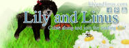 buy-photos-online-photoshopping_ws_1407553630