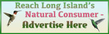 web-banner-design-header_ws_1408205257