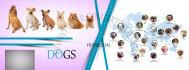 web-banner-design-header_ws_1408592831