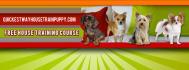 web-banner-design-header_ws_1411244859