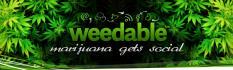 web-banner-design-header_ws_1411676053