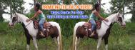 web-banner-design-header_ws_1417544896