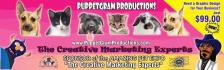 banner-ads_ws_1426089469