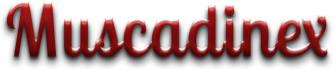buy-photos-online-photoshopping_ws_1469250151