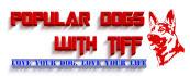 creative-logo-design_ws_1469603274
