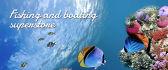 banner-ads_ws_1469726458