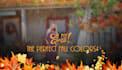 banner-ads_ws_1479219612