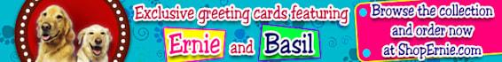 banner-advertising_ws_1480573838