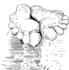 digital-illustration_ws_1480703238