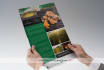 creative-brochure-design_ws_1480731064