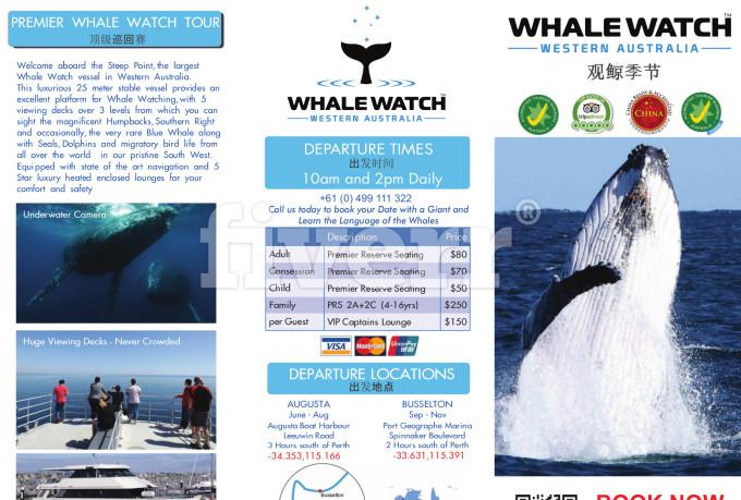 creative-brochure-design_ws_1462274258