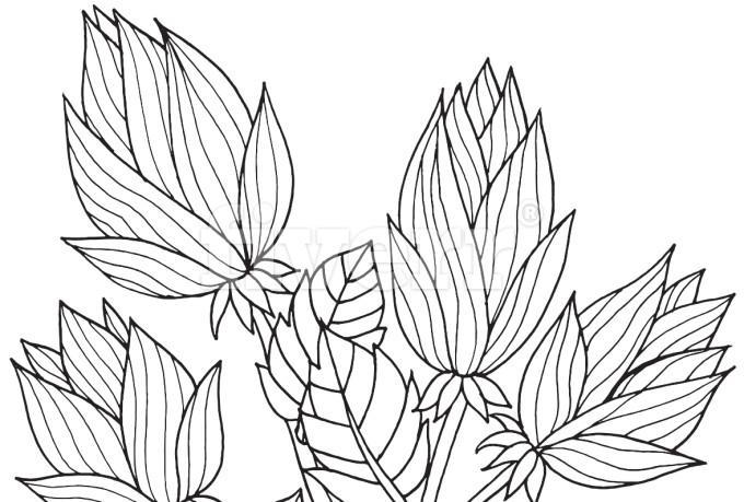 digital-illustration_ws_1463320326