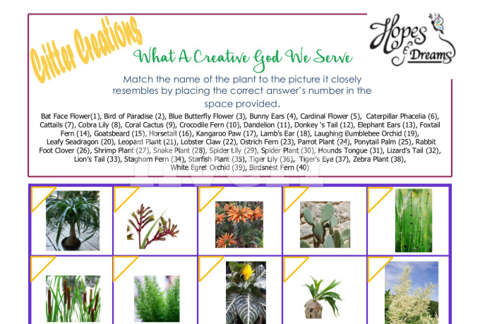 creative-brochure-design_ws_1463883251