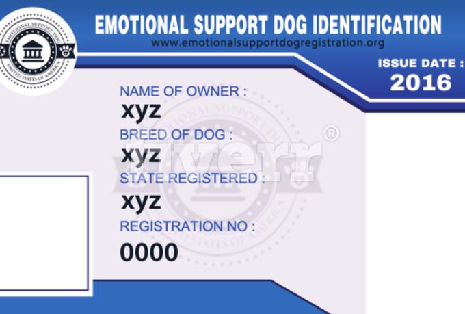 sample-business-cards-design_ws_1467647554