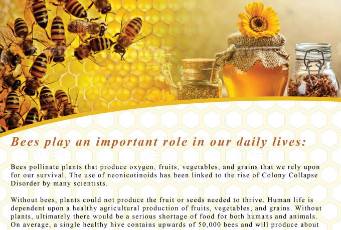 creative-brochure-design_ws_1480625029