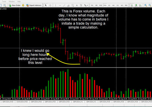 Forex volume calculator