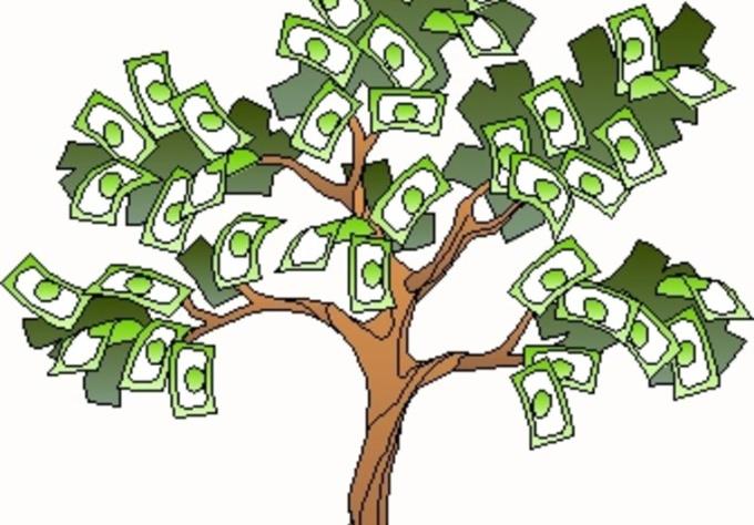 pakistan fiverr money tree