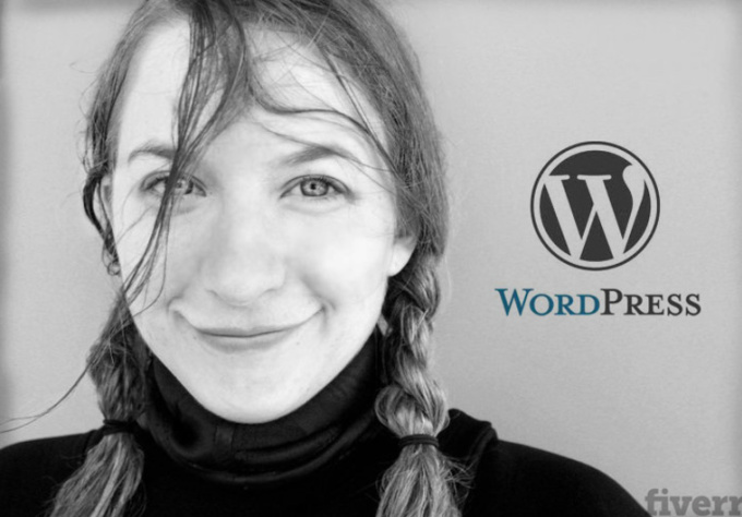 give you a professional Wordpress tutorial over Skype