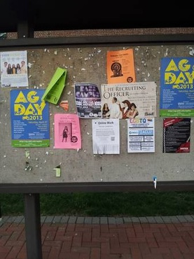 post 25 flyers for you at and around the University of Delaware