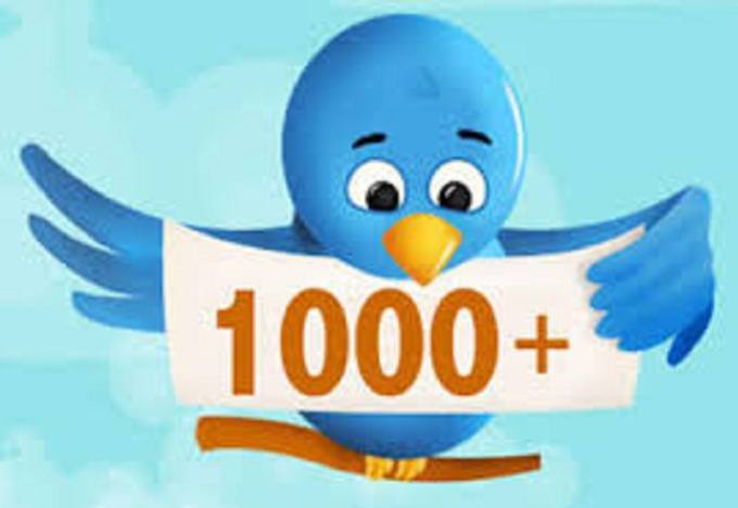 provide 1000 Twitter Followers