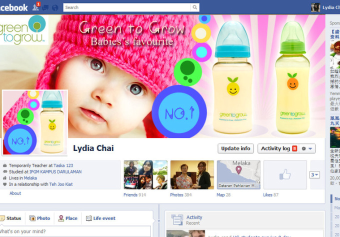 design a PROFESSIONAL Facebook Fanpage Timeline Cover Photo