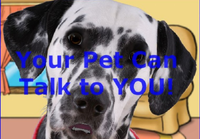 how to make animated pet talking pictures