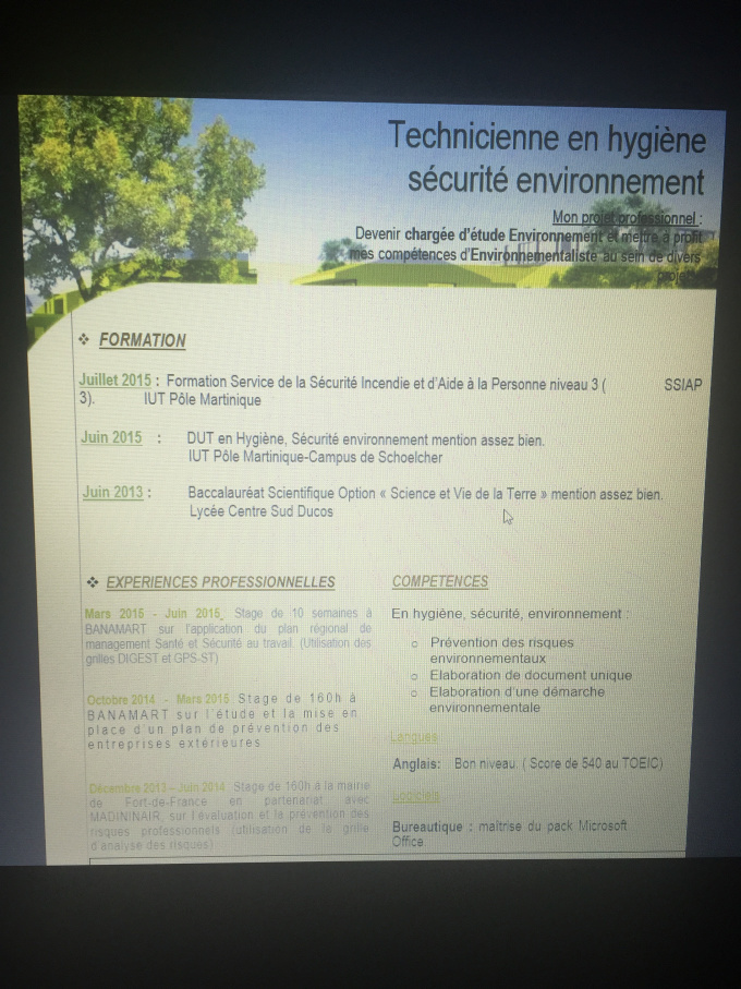 translate your resume into french