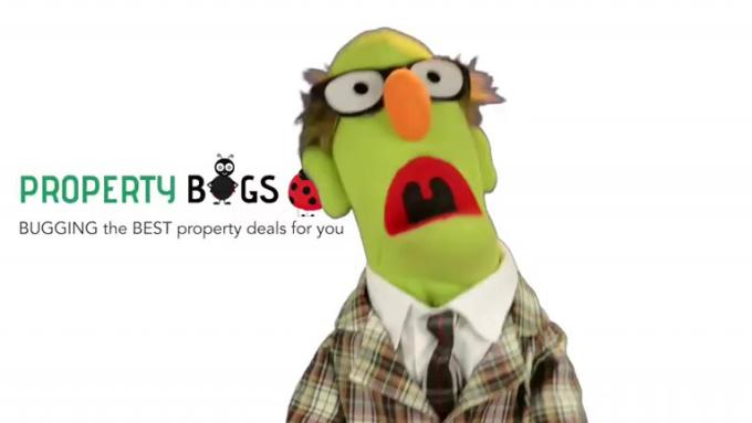 gig_propertybugs_2