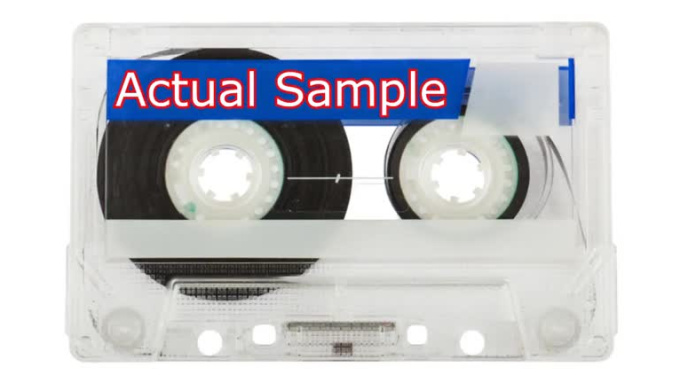voice_over_sample_video