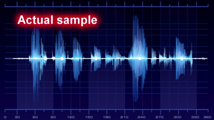 fleki_voiceover_sample
