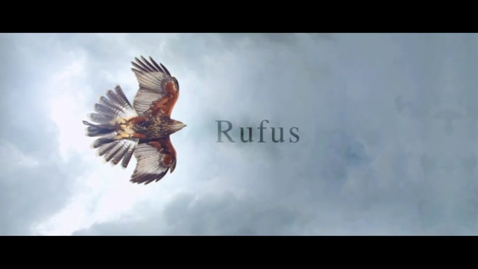STAR SPORTS WIMBLEDON RUFUS PROMO