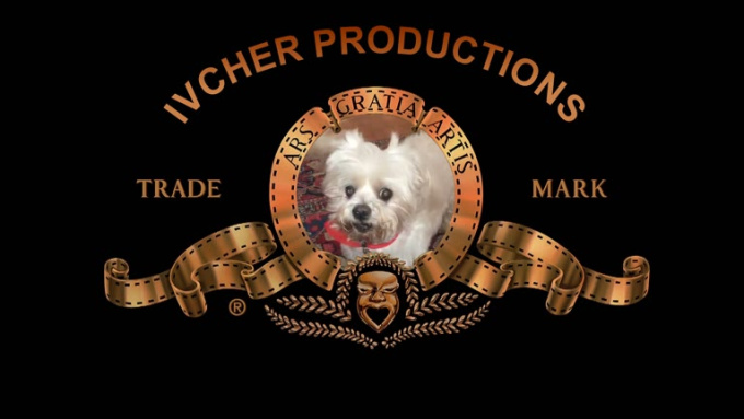 ivcher productions video intro
