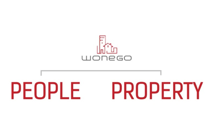 wonego video explainer revision