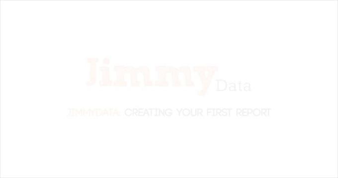 Jimmy_Data_Report