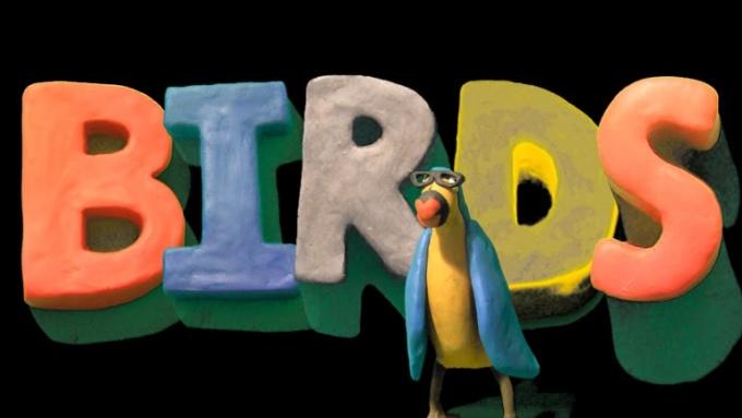 twooldbirds