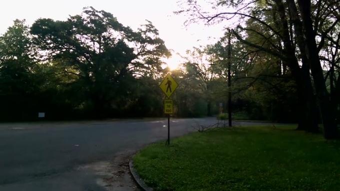 elduendeverde