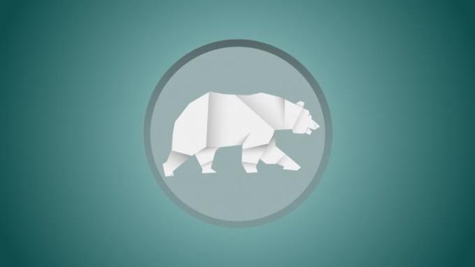 Bear modified