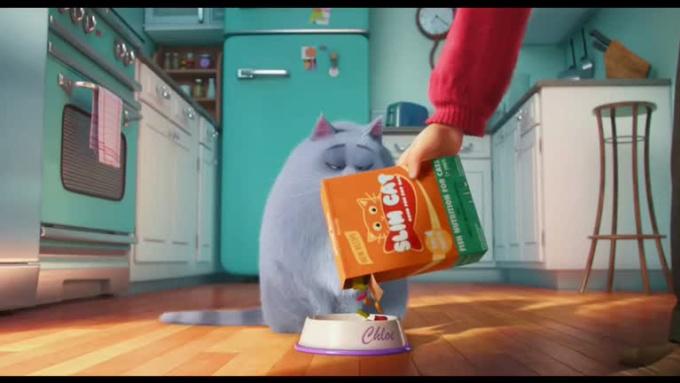 Cat Fiverr - ClarksvilleProperty
