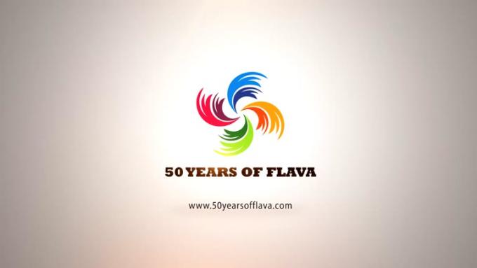 Flava Logo Intro