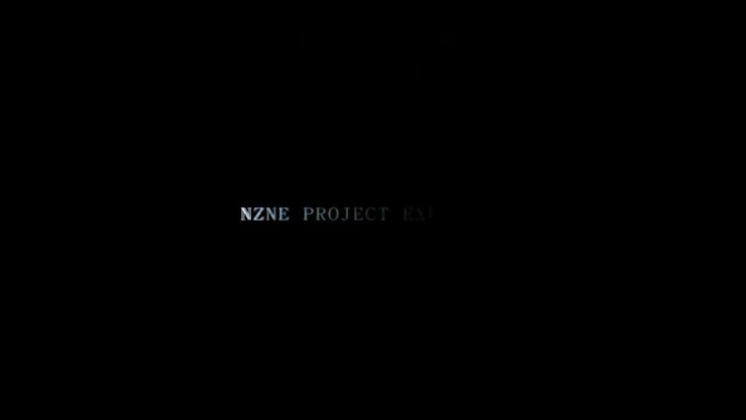 NZNE_PROJECT_EXECUTION