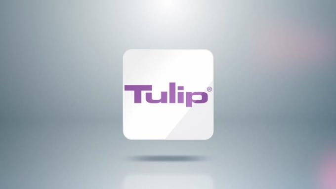 tulipmedica_FullHD