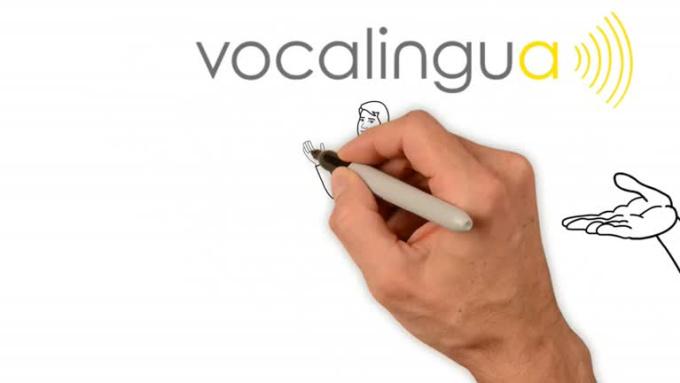 Vocalingua final