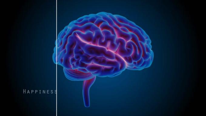 Brains_blue_PREVIEW